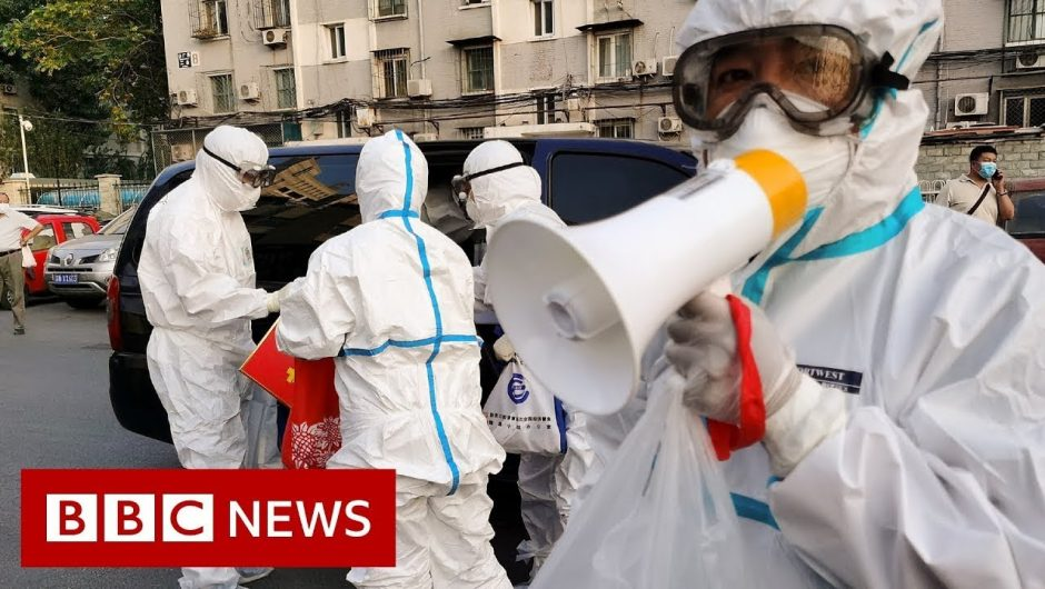 Beijing back in lockdown as city faces new surge of coronavirus cases – BBC News