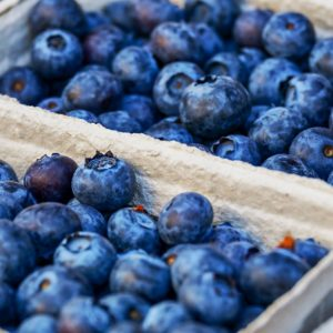 blueberries and anti aging